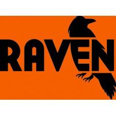 New! Raven Black & Satin Stripes Paint