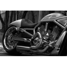 V-Rod 300 Wheels & Swingarm